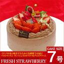 【イチゴシーズン限定】クリスマス フレッシュストロベリーチョコレートケーキ 7号 21cm