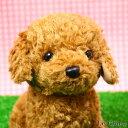 トイプードルのぬいぐるみ お座り(スターチャイルド)(犬/おもちゃ/プレゼントにおすすめ/ギフト/誕生日/記念日/バースデー/かわいい/可愛い イヌ/結婚祝い/出産祝い)