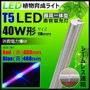 LED 植物育成ライト LED蛍光灯 40W 器具一体型 直管 T5 LED 直管蛍光灯 LED蛍光管 天井照明 間接照明 棚下照明 ショーケース照明 バーライト 取付金具付き LEDランプ 植物育成用 LED LG40-T5II ビームテック