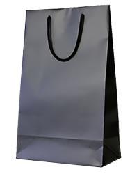 【あす楽】 2本用 ギフトバッグ