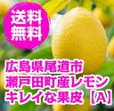 送料無料 広島県尾道市瀬戸田町産レモン 2kg 15-25個 【防腐剤・防かび剤不使用】 【ノーワッ
