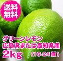 送料無料 広島県(または高知県)産レモン 2kg【防腐剤・防かび剤不使用】【ノーワッ