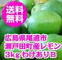 送料無料 わけありレモン 3kg 広島県産 防腐剤・防かび剤不使用 ノーワックス 皮ごと食べられます