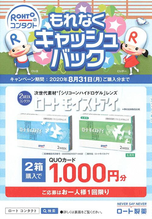 【QUO1,000円応募ハガキ付&ポイント20...の紹介画像2