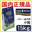 【ポイント20倍】【FISH4DOGS】フィッシュ4パピー コンプリートパピーフード 15kg【ドッグフード/ドライフード】【正規品】【ブリーダーパック】【20...