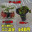 【ミニ温室】【フラワーキャップ】 観葉植物 食虫植物 などの保温、湿度保持に 10P18Jun16