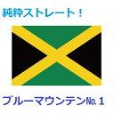 ジャマイカ ブルーマウンテン NO.1 100g (コーヒーメーカー/ドリップ向き中細挽き)