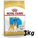ロイヤルカナン 柴犬 子犬(生後10ヵ月齢まで)3kg 3182550823944