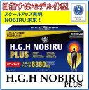 日本HGH協会認定HGH NOBIRU PLUS 12g×30袋HGH ノビル プラスめざすはモデル