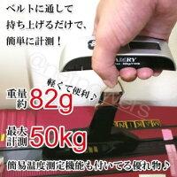 �٥�ȼ��ߤ겼���ǥ����륹������EL10�������̥����ĥ������ʤɤη��̤�(����50kg)