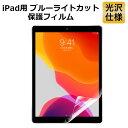 iPad 9.7 対応 ブルーライトカット フィルム 液晶保護フィルム 光沢仕様 指紋防止 気泡レス 抗菌
