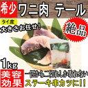 大きさお任せ!!【タイ産】ワニ肉 テール約1kg クール