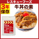 《限定セール》 レスキューフーズ 牛丼の素