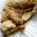 REDECKER レデッカー 高級キャットブラシ柔らか豚毛 猫用ブラシ&手入れ用リムーバーセット 猫 ブラシ 抜け毛 換毛 ねこ 毛 ペット ブラッシング マッサージ くし