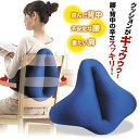 The cushion which I support it, and is sat on by both sides! Beautiful posture hold cushion [RCP] fs2gm