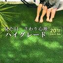 人工芝 ロール 芝丈20mm 2m×5m ロールタイプ 人工芝生 リアル ハイグレード 水はけ 長