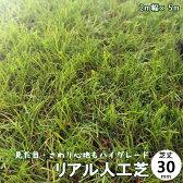 人工芝 ハイグレード リアル人工芝 ロール 人工芝生 芝丈30mm 2M×5M ロールタイプ 【用途】庭・ベランダ・屋上・用途様々 【人工 芝生】