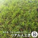 人工芝 ハイグレード リアル人工芝生 芝丈30mm 1M×10M ロールタイプ庭・ベランダ・屋上・用途様々