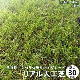 人工芝 芝生 芝 人工芝生 リアル●ロールタイプ 芝丈30mm 2M×50cm●庭・ベランダ・屋上・用途様々