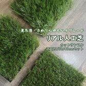人工芝カットサンプル 芝丈20/30/40mmセット【メール便】お一人様1個限り