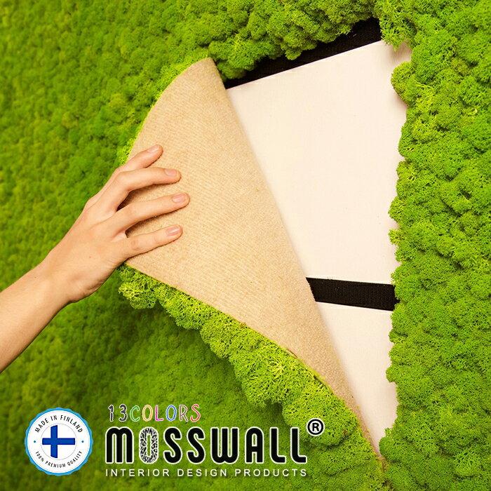 壁面緑化 壁面緑化パネル 40×60cm モス グリーンウォール ウォールグリーン プリザーブド プリザーブドフラワー 壁掛け 防音材 インテリアグリーン レインディアモス 苔 DIY MOSSWALL モスパネル
