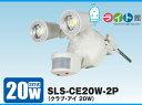 日動工業 LEDセンサーライト クラブ・アイ SLS-CE20W-2P