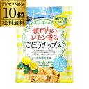 瀬戸内のレモン香るごぼうチップス×10個セット