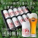 長浜 IPA スペシャル350ml 缶×10本Nagahama IPA Special長濱浪漫ビール【ギフトBOX(10本入)】【送料無料】[地ビール][国産][滋賀県][日本][クラフトビール][缶ビール]