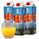 青研の葉とらずりんごジュース1001000ml×3本