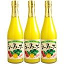 シークヮーサー果汁100% 原液500ml×3本【3本セット】【送料無料】[シークァーサー]