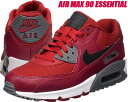 NIKE AIR MAX 90 ESSENTIAL gym ...