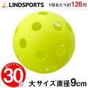 穴あき練習ボール (大) 30球セット