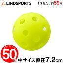 穴あき練習ボール (中) 50球セット