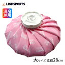LINDSPORTS 布氷のう(大・28cm)
