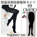 Thermo300-6