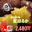 茨城県産 紅はるか さつまいも S,Mサイズ 5kg 送料無...