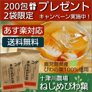 ねじめびわ茶200包 2袋セット 10包特典付