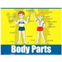 ボディー・パーツ Body Parts