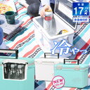 【あす楽】【送料無料】保冷 クーラーボックス 17L ペット...