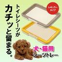 【シーツトレー レギュラー】トイレマット 犬用 トイレトレー...