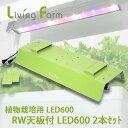 植物栽培用 水耕栽培用 高輝度 LED 600-2 RW天板付(送料無料)