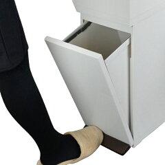 ゴミ箱分別縦型2段スリムパッキン付きふた付き38Lベーシックカラー