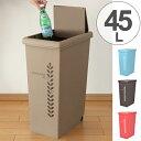 ゴミ箱 スライドペール 45L リーフ ( ごみ箱 ダストボックス おしゃれ ふた付き 45l 45リットル スライド式 スリム )