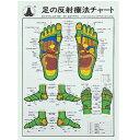 足の反射療法チャート (SR-414)