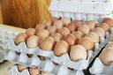 【送料無料】【国産・福島県産】【やますけ農園】娘のためのたまご(10個入り)【純国産鶏ゴトウもみじ】