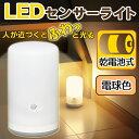 乾電池式 LEDセンサーライト BSL-10L スタンドタイプ ホワイト (電球色)【センサーライト