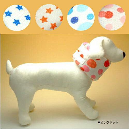 Coo Couture(クークチュール) ペットヘルスケア クインカラー25 犬用 SSサイズ スター柄レッドブルー/ドット柄ピンクブルー