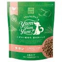 WITH GREEN DOG Yum Yum Yum!(ヤムヤムヤム) チキン ドライタイプ 犬用 500g