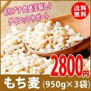 もち麦 2850g (950g×3) モチプリで美味しく健康生活 LOHAStyle