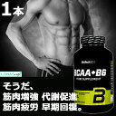 BioTech USA BCAA + B6 筋肉増強 代謝促進 筋肉疲労 早期回復 200錠×1本